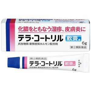 テラ・コートリル軟膏a 6g|gionsakura