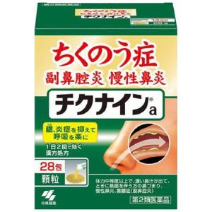 蓄膿症薬 チクナインa 28包|gionsakura