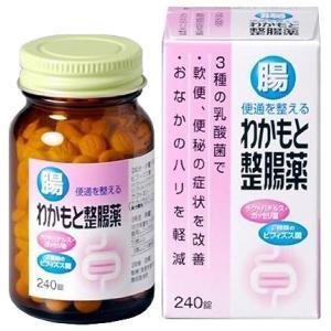 わかもと整腸薬 240錠|gionsakura