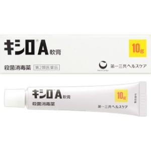 キシロA軟膏 10g|gionsakura