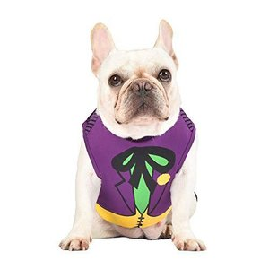 DC Comics for Pets Joker Dog Costume XLarge  Large Dog Costume for Pets Off