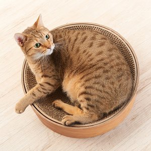 猫 爪とぎ 木目 お皿型 円形 Gari Gari Dish ガリガリディッシュ スクラッチャー インテリア