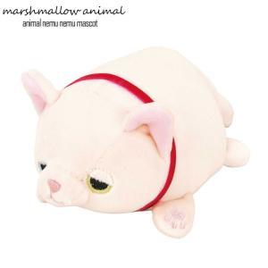 ぬいぐるみ もちもち マスコット マシュマロアニマル ネコ こゆき 猫 動物 アニマル 白猫 オッドアイ ふわふわ 小さい|gita