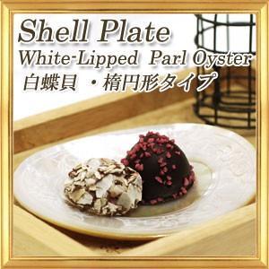 天然素材のお皿 シェルプレート 白蝶貝 楕円形タイプ|giyaman-jewellery
