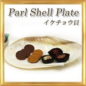 天然素材のお皿 シェルプレート イケチョウ貝 大皿タイプ|giyaman-jewellery
