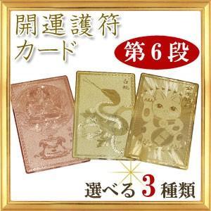 第6段 全3種類 開運祈願 開運カード 愛染明王 白蛇 金運招福 護符|giyaman-jewellery