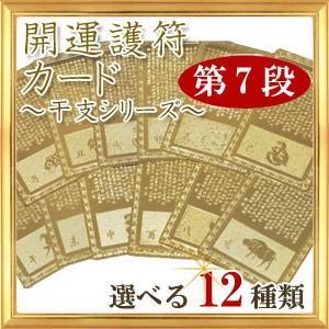 ◆第7段◆全12種類 開運祈願 開運カード 干支シリーズ 護符|giyaman-jewellery