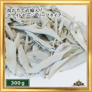 無農薬 高品質 カリフォルニア産 ホワイトセージ リーフ 300g 枝なし|giyaman-jewellery