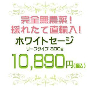 無農薬 高品質 カリフォルニア産 ホワイトセージ リーフ 300g 枝なし|giyaman-jewellery|02