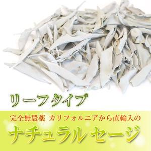 無農薬 高品質 カリフォルニア産 ホワイトセージ リーフ 300g 枝なし|giyaman-jewellery|03