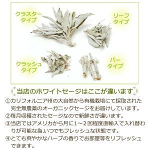 無農薬 高品質 カリフォルニア産 ホワイトセージ リーフ 300g 枝なし|giyaman-jewellery|09