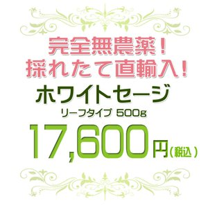 無農薬 高品質 カリフォルニア産 ホワイトセージ リーフ 500g 枝なし|giyaman-jewellery|02