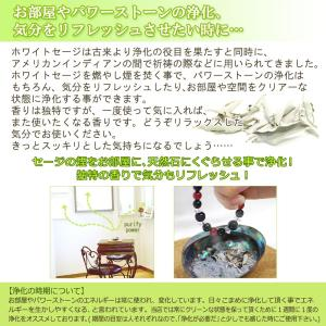 無農薬 高品質 カリフォルニア産 ホワイトセージ リーフ 500g 枝なし|giyaman-jewellery|06