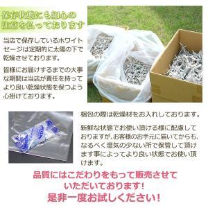 無農薬 高品質 カリフォルニア産 ホワイトセージ リーフ 1000g 枝なし|giyaman-jewellery|10