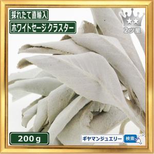 無農薬 高品質 カリフォルニア産 ホワイトセージ クラスター 200g 枝付き|giyaman-jewellery