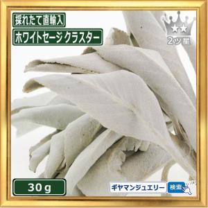 無農薬 高品質 カリフォルニア産 ホワイトセージ クラスター 30g 枝付き|giyaman-jewellery