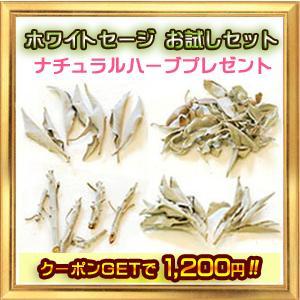 無農薬 高品質 ホワイト セージ お試しセット ナチュラルハーブプレゼント|giyaman-jewellery