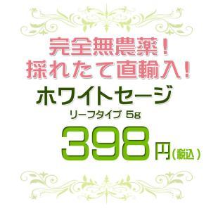 無農薬 高品質 カリフォルニア産 ホワイトセージ リーフ 5g 枝なし|giyaman-jewellery|02
