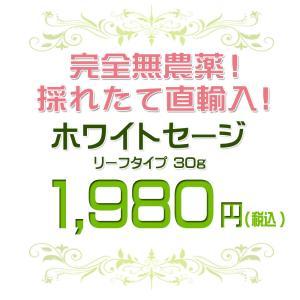 無農薬 高品質 カリフォルニア産 ホワイトセージ リーフ 30g 枝なし|giyaman-jewellery|02