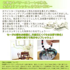 無農薬 高品質 カリフォルニア産 ホワイトセージ リーフ 30g 枝なし|giyaman-jewellery|06