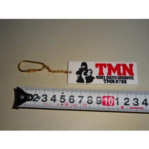 TMN 終了宣言 4001DAYS GROOVE キーホルダー|gkaitori