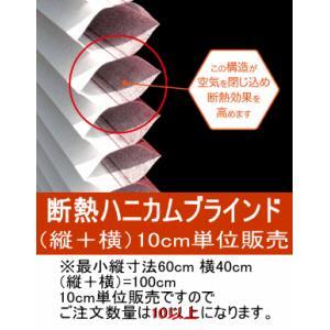 ハニカム構造 断熱Airブラインド (縦+横)10cm単位オーダーカット販売 まぶしさ軽減・プライバシー保護・省エネ対策 取り付け簡単 glass-safe