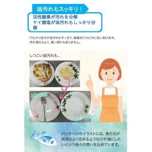 地の塩社 クリーン食器洗い機専用洗浄剤 500g|glassgow|03