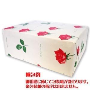 三立製菓 缶入カンパン 100g×12個の関連商品10