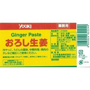 内容量:900g原材料:生姜、食塩、生姜しぼり汁、pH調整剤、酸化防止剤(V.C)、増粘剤(キサンタ...
