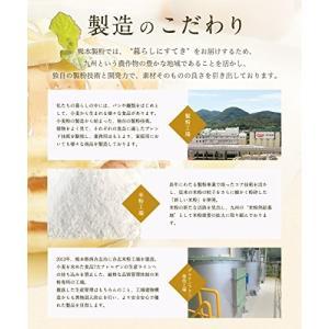 【製パン用米粉】製パン用に特殊粉砕した米粉です。もっちり、しっとりとした食感です。【熊本県産米100...