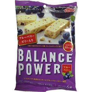 バランスパワー ブルーベリー味(果肉入り) ...の関連商品10