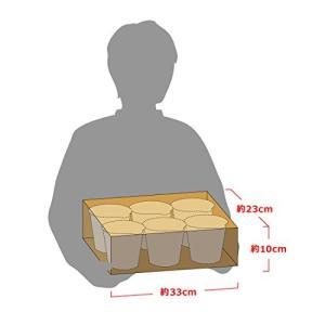 日清ハヤシメシ デミグラス 103g×6個の関連商品8