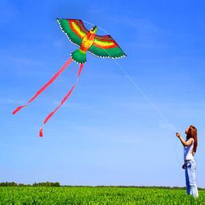 カラフルな漫画オウム凧50メートル飛んライン簡単凧屋外スポーツ単線フライングカイト用テール付きキッズ大人ギフト|globalstyleclub