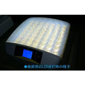 孵化器MATG-LED-56 自動転卵 温湿度アラーム キャンドリング機能付孵卵器 うずら ふ孵器 ふ卵器|globatt-ej|04
