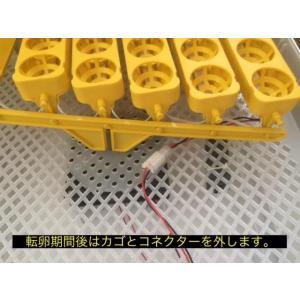 孵化器MATG-LED-56 自動転卵 温湿度アラーム キャンドリング機能付孵卵器 うずら ふ孵器 ふ卵器|globatt-ej|05