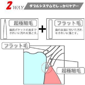 歯ブラシ と 歯磨き粉 が オールインワン 画期的な 携帯 ハブラシ ゆうパケット送料無料 glow-japan 05