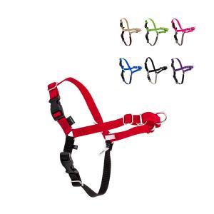 【全品あすつく】ペットセーフ Petsafe 犬用 イージーウォーク ハーネス 小型 〜 大型犬 SS 〜 XL サイズ Easy Walk Harness EWH-HC 散歩 トレーニング|glv