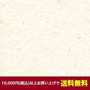 ベルビアン 壁紙シート TLS1202-12 ベルビアン漆喰ルマージュ プレーン 12.5m|gm-mart