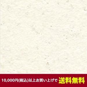 ベルビアン 壁紙シート TLS1302-12 ベルビアン漆喰ルマージュ ラフ 12.5m|gm-mart