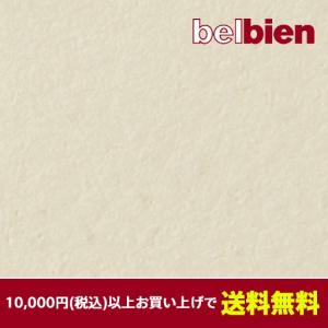 ベルビアン 壁紙シート TLS1304-12 ベルビアン漆喰ルマージュ ラフ 12.5m|gm-mart