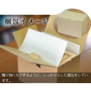 貯金箱 賽銭箱  さい銭箱 国産 木製 賽銭箱型貯金箱 格子なし|gm-shop|05