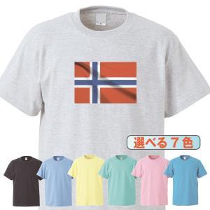Tシャツ/国旗/ノルウェー/7色/0018a|gmsfactory