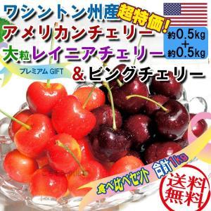 【ワシントン州産大粒レイニアチェリー0.5kg+ビングチェリ...