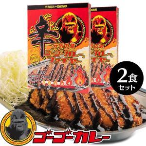 ゴーゴーカレー 辛口 2箱2食 セット レトルトカレー ご当地 激辛 ポークカレー 金沢カレー|gogo-curry