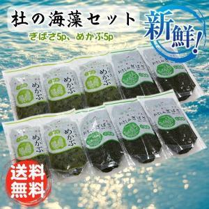 杜の海藻セット アカモク5p・メカブ5pの計10個セット 栄養たっぷりでヘルシー 食べてキレイに!母の日ギフト・2019 goko-h