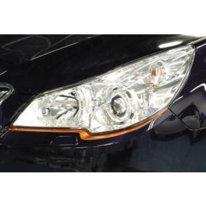 CTI レガシィ BR BM A〜C型 標準バンパー用 チークライン FRP オレンジ|goldrush-store