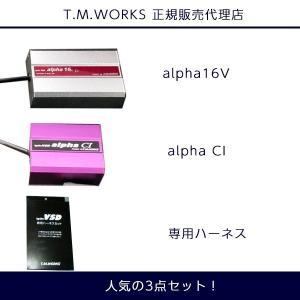 ホンダ エリシオン RR5/RR6 J35A VH017 T.M.WORKS Ignite VSD alpha シリーズ 人気の