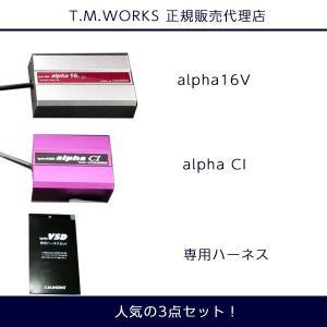 トヨタ アルファード ATH20W VH064 T.M.WORKS Ignite VSD alpha シリーズ 人気の