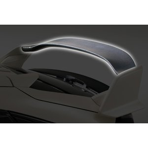 VARIS バリス ホンダ シビック TYPE R FK 8 ARISING-I リアウイングフラップ カーボン [型番: VAHO015C ]|goldrush-store