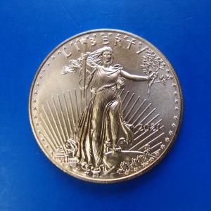 アメリカ イーグル金貨 1オンス 2018年|goldtohki